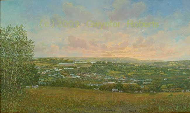 looking towards Fleur de lys from Cefn-Hengoed